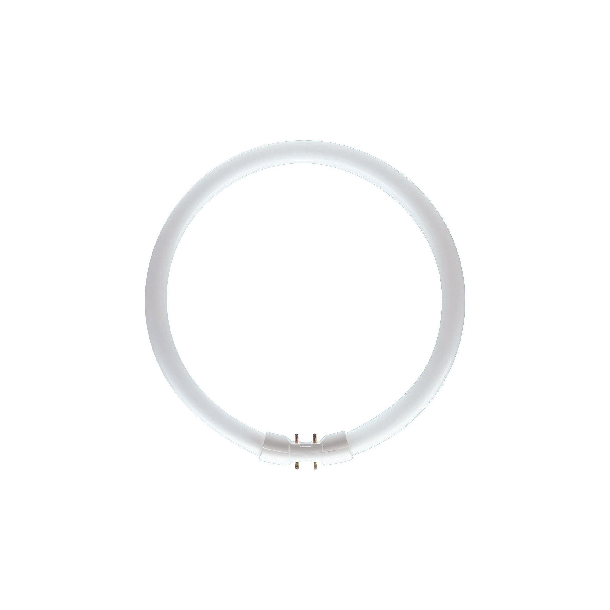 Philips Master TL5 Circular Ring 22W 840 2GX13